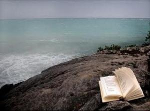Un libro que alguien quiso pero dejo esperando en la playa como amor imposible.